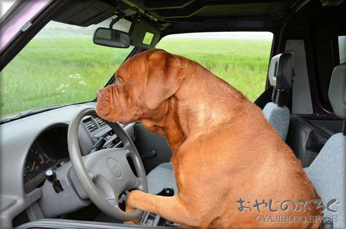 クルマの運転を始めると優しかった人が急に怖い人に変わっている
